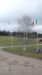 MDV_garden+flags2011